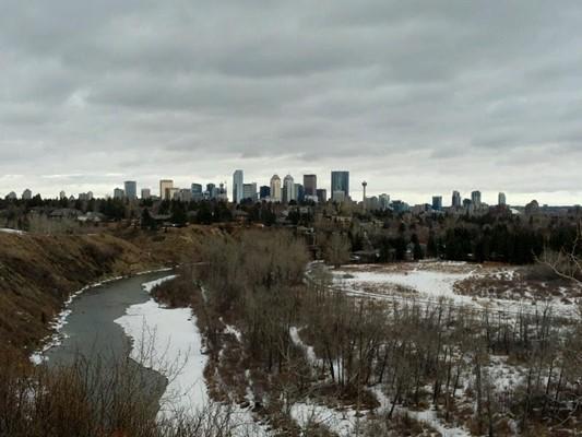 Auburn Bay Dog Park Calgary Ab